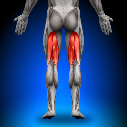 Back Of Leg / Hamstring Pain